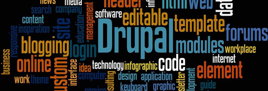 Services proposés par une agence web Drupal